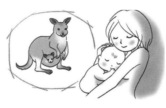 神奇的袋鼠式护理